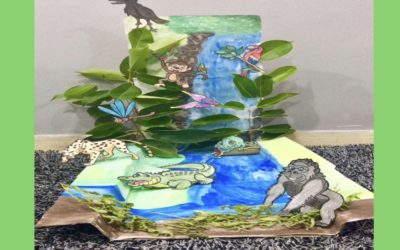 Ecosystem Dioramas